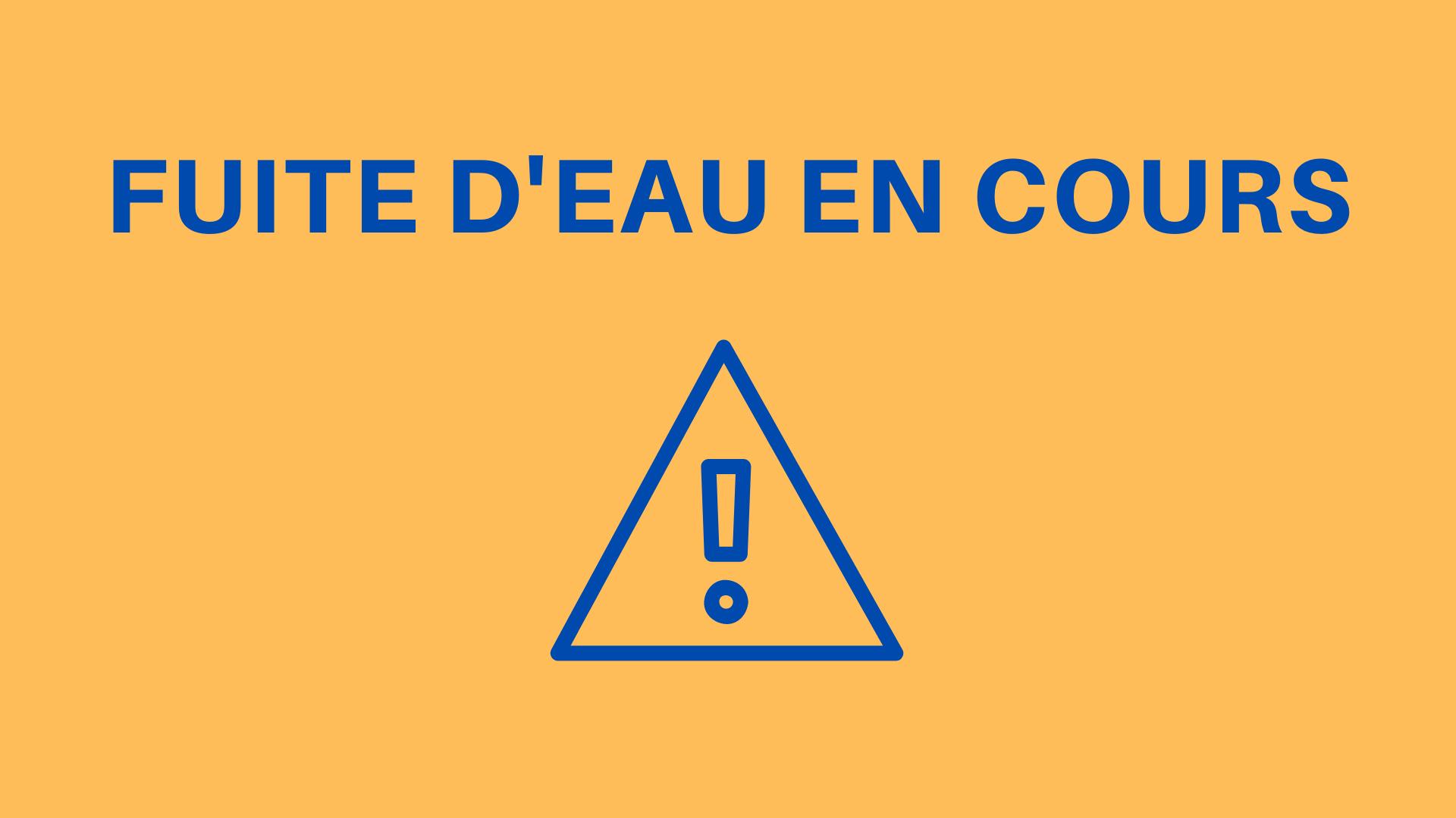 Réparation - Fuite - Secteur avenue de Lautrec